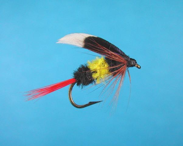 McQuinty Fly
