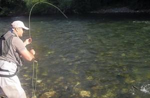 Odjeca-stap-oprema-Fly-fishing-akcija-300x195