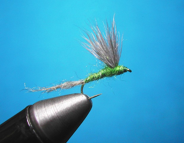 Olive Sparkle Dun