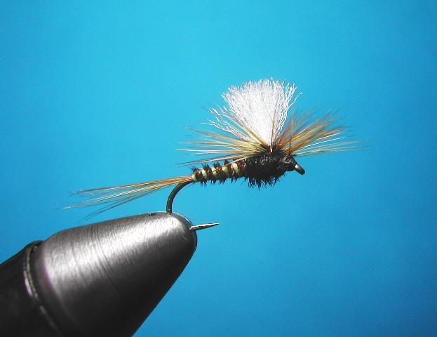 Parashut Pheasant Tail