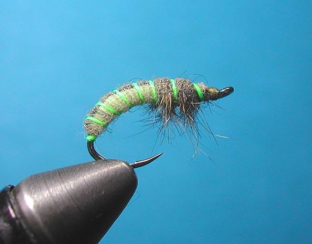 STOCKING-larva