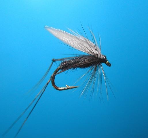 Hawthorn Wet Fly