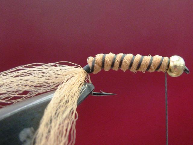 Light brown caddis larva 005
