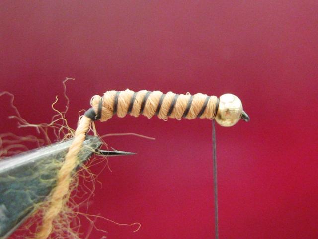 Light brown caddis larva 006