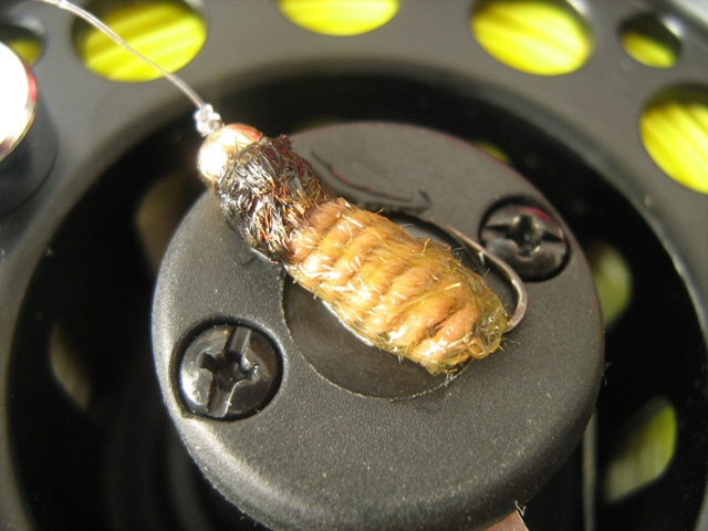 Light brown caddis larva 015