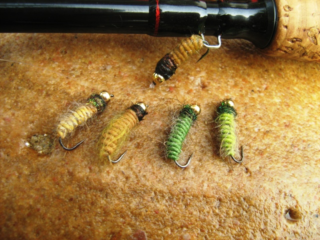 Light brown caddis larva 019