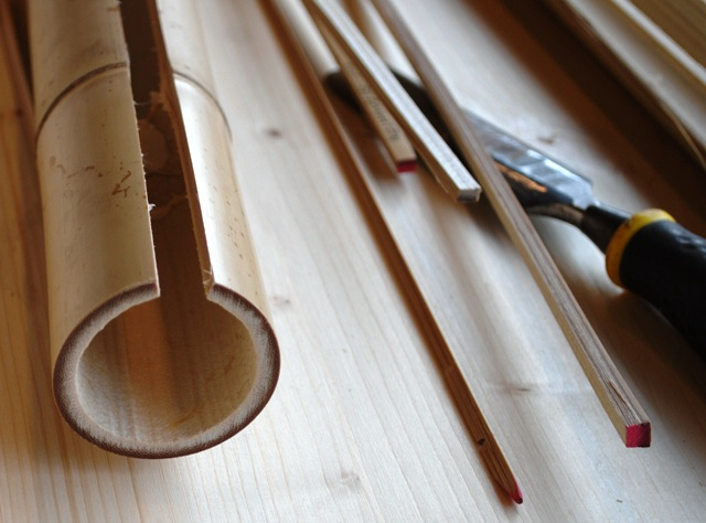 bambus 0051 web