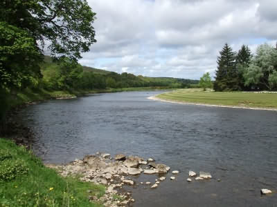 reka spej 3