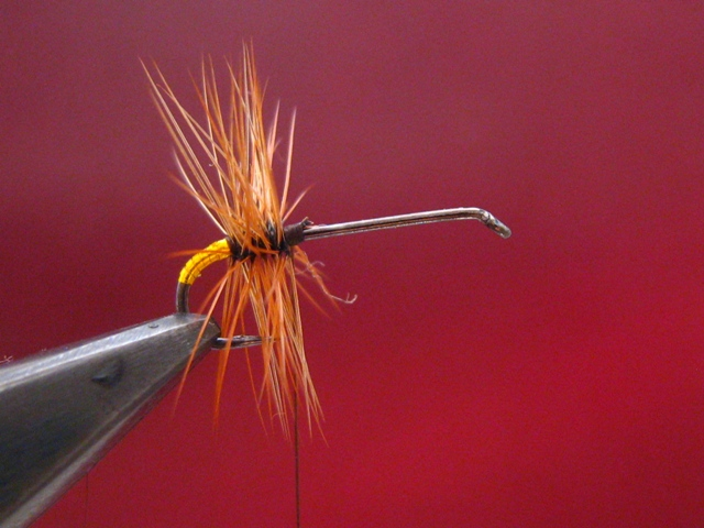 The Renegade fly 003 web