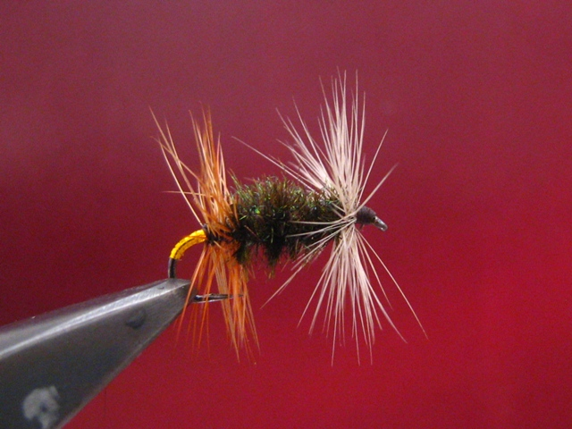 The Renegade fly 006 web