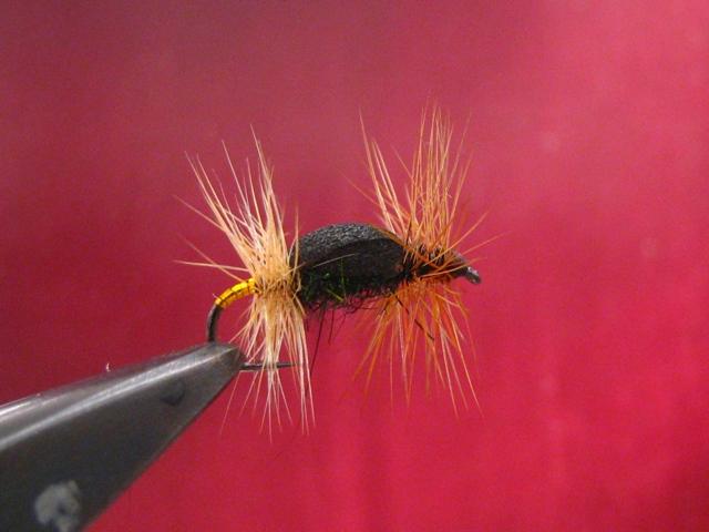 The Renegade fly (varijanta1) web