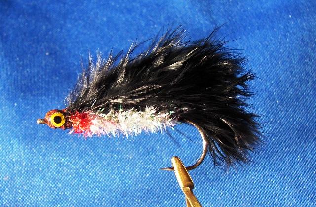 Snappy Poodle - 10cm web
