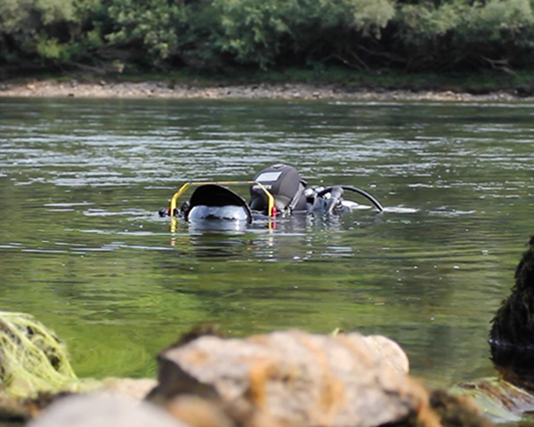 The-Story-of-a-Danube-Salmon-Jovana-Milanko-Liquid-Art