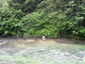 Pliva sipovo 4 kolo web2