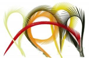 Goose-Biots-(stripped-goose) web
