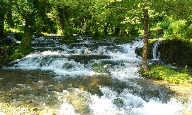 Rijeka Janj