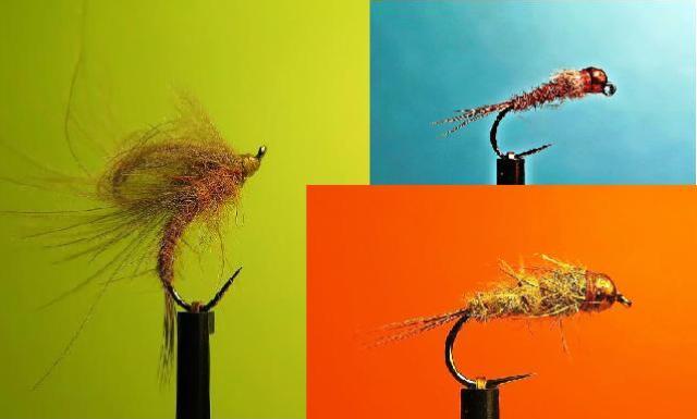 favorit muhe skupna slika web