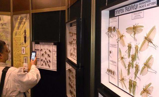 Izložba insekata oduševila posetioce