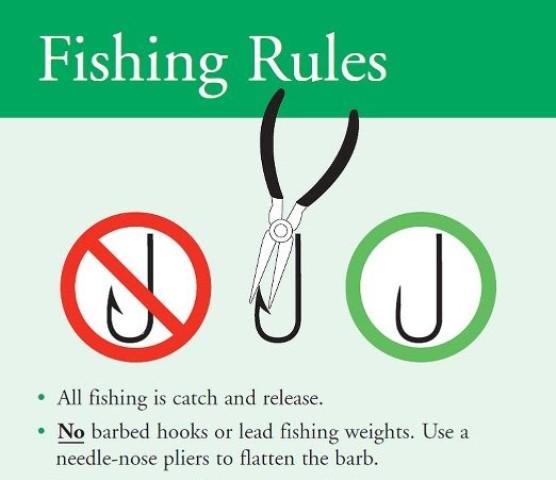 fishing rules