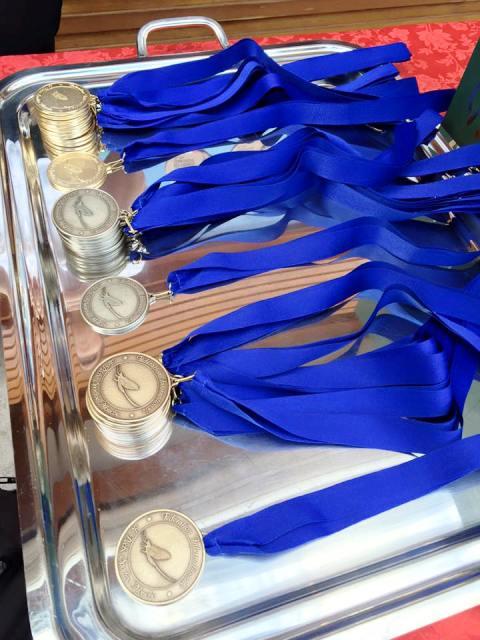 medalje web