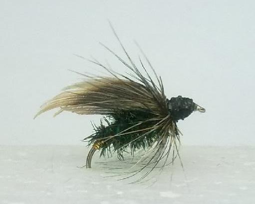 Alderfly_dry