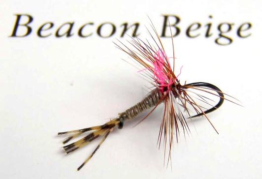 Beacon-Beige