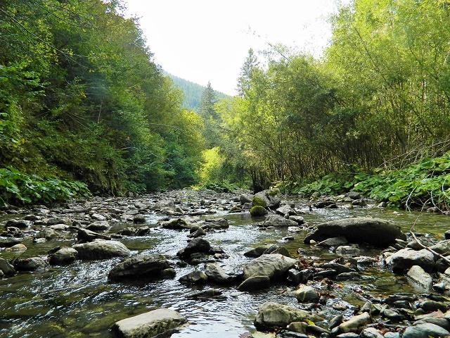 slika-2-usce-sorskog-potoka-i-zadnje-sore