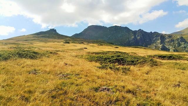 planina-w1