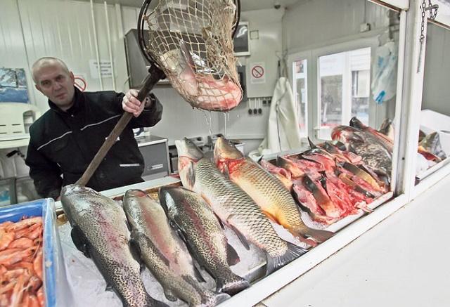 tn-prodaja-ribe