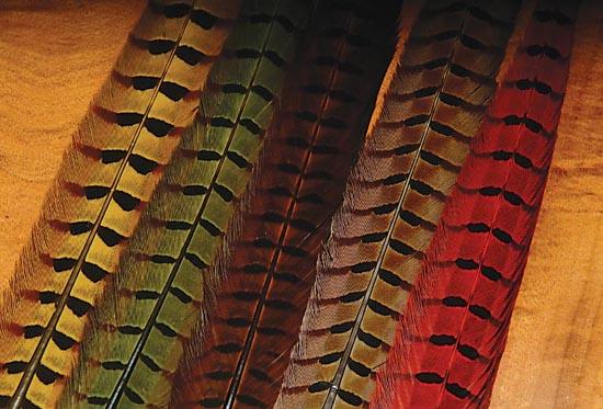 whiting-dry-fly-quarter-saddles-14