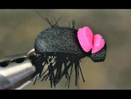 Imitacija kopnenih insekata – Foam Beetle