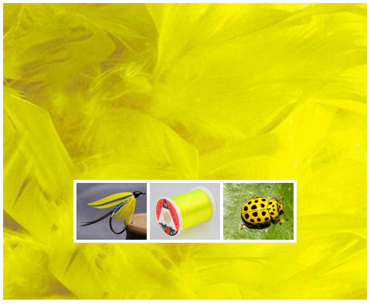 Žuta boja kod mušičarenja