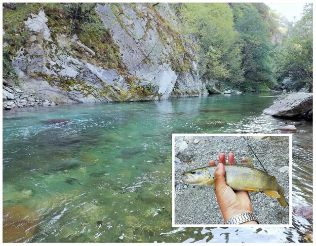 Reka Radika u Makedoniji