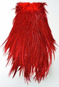 Crvena boja