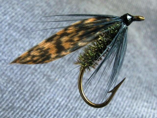 Alder fly (Jošavka) mokra muha