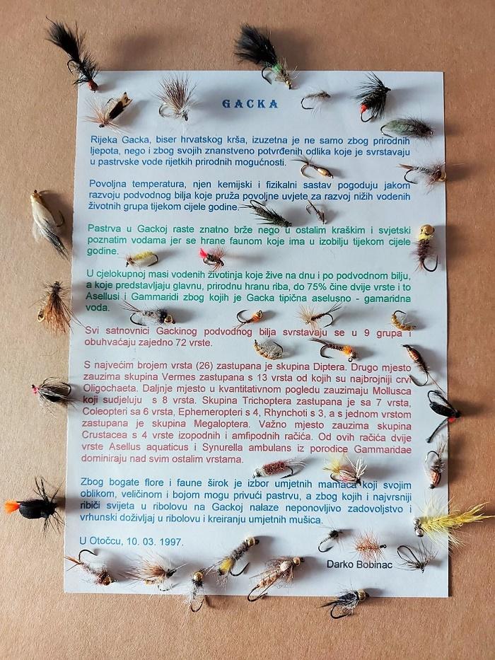 O Gackoj i insektima