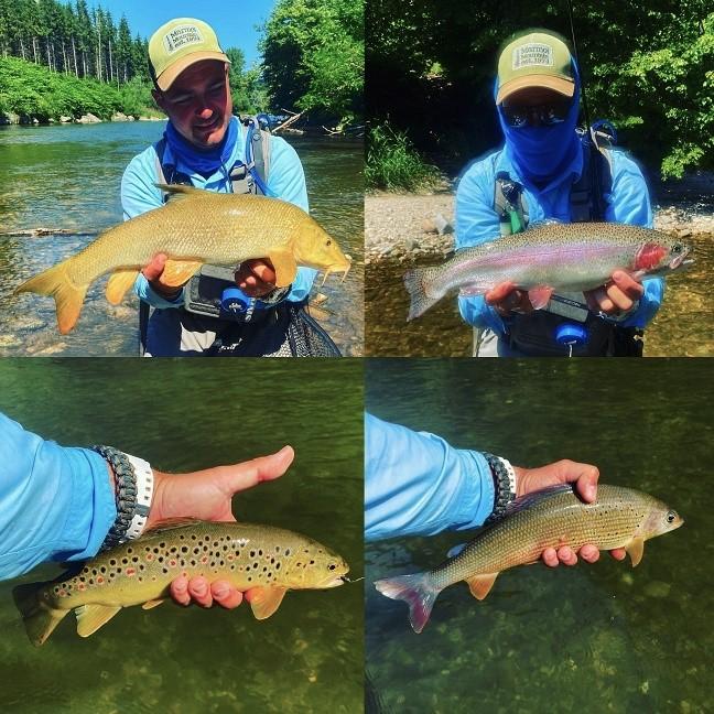 Poker riba sa reke Ager