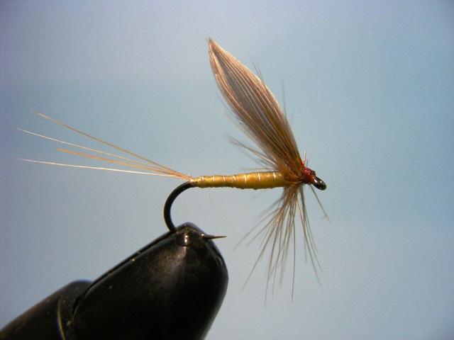 Tradicionalne banjalučke mušice IV