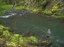 Oregon Coast Steelhead