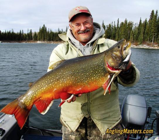 World Record Brook Trout (Zlatovčica)