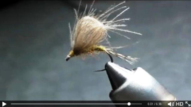 Fast loop Dry Fly