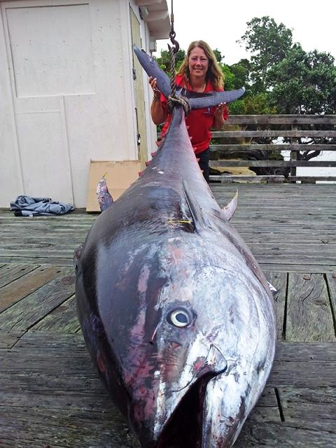 Ogromna tuna