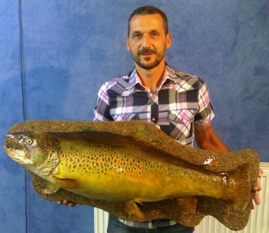 Potočna pastrmka teška 14kg