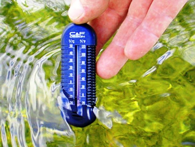 Termometar kod mušičarenja