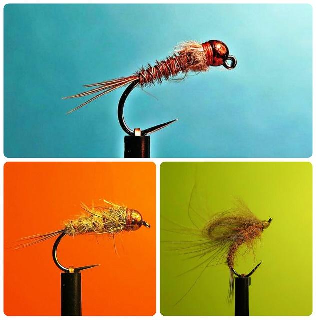 Favorit muhe