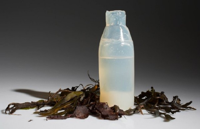 Biorazgradiva flaša za vodu