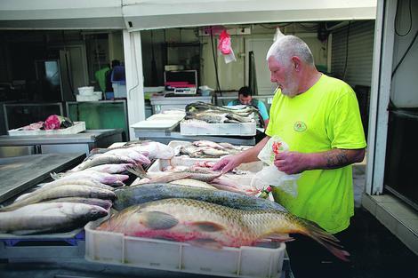 U Srbiji se riba jede tri puta manje od proseka na Zemlji