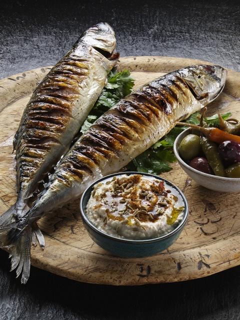 O ribi – riba u ishrani