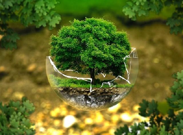 Festival zaštite životne sredine na FTN-u