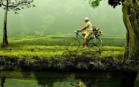 Svetski dan zaštite životne sredine!